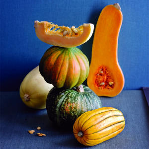 related literature of squash Define squash squash synonyms, squash pronunciation, squash translation, english dictionary definition of squash n 1 any of various bushy or vining plants of the genus cucurbita, having unisexual flowers and fleshy edible fruit with a thick rind when mature.